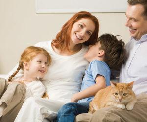 Questions familiales : Droit de la famille - Avocate a Evry en Essonne (91)